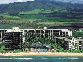 Come And Stay Where The Whales Play! - Kailua vacation rentals