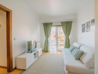 BELEM APARTMENT WITH BALCONY, GARAGE & ELEVATOR - Belem vacation rentals