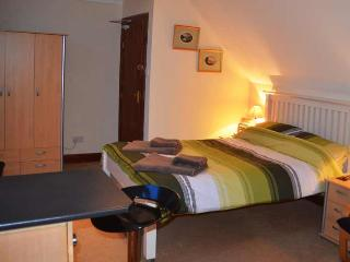 Comfortable Condo with Internet Access and Housekeeping Included - Callander vacation rentals