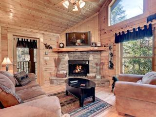 Affordable Cabins in the Smokies - Sevierville vacation rentals