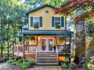 'Mimi's Cottage' Captivating 1BR Asheville Home w/Wifi, Private Wraparound Porch & Outdoor Firepit - Quiet Urban Setting! Minutes from Biltmore Village, Blue Ridge Parkway, Local Restaurants & More! - Asheville vacation rentals
