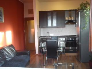 Apartments Ivana - 13441-A3 - Starigrad-Paklenica vacation rentals