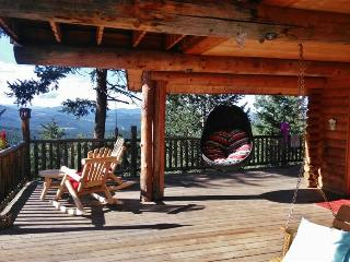Hand-Designed 3+BR Evergreen Cabin on 3 Scenic Acres w/Private Hot Tub, Wifi & Phenomenal Views - Easy Access to Skiing, Red Rocks Amphitheater & More! - Evergreen vacation rentals