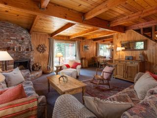 Iravani North Tahoe Dog Friendly Cabin - Agate Bay vacation rentals