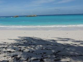 New Lisitng SEA GRAPE Beachfront Free Car - Tar Bay vacation rentals