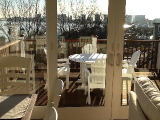 New lux. Apt.private roof deck harbor/skyline - Boston vacation rentals