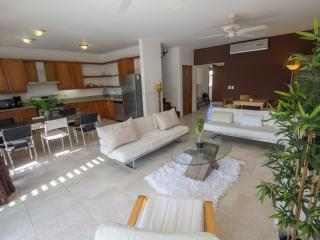 Luxury top-floor penthouse Sosua - Sosua vacation rentals