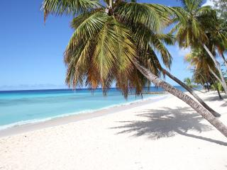 1 bedr. apartments Dover beach -Saint Lawrence Gap - Saint Lawrence Gap vacation rentals