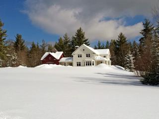Beautiful New Country Retreat 2.5 miles - Stratton Mountain vacation rentals