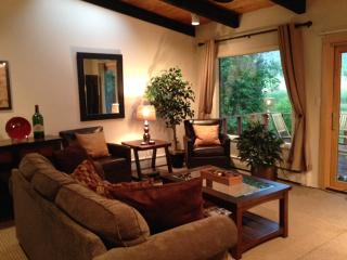 3 bedroom House with Internet Access in Aspen - Aspen vacation rentals