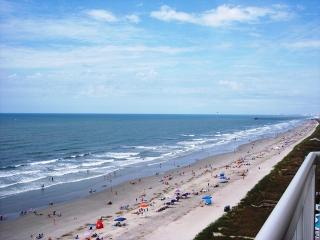 Winter Getaway Specials! Spacious & Sunny! - North Myrtle Beach vacation rentals