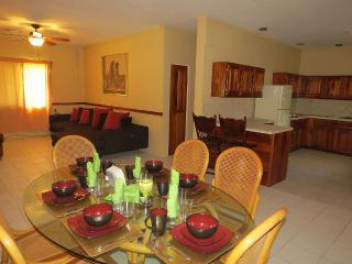 Nice Villa with Housekeeping Included and Television - Burrell Boom vacation rentals