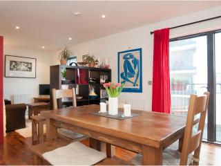 Contemporary one bedroom apartment in Dalston / Shoreditch. - London vacation rentals