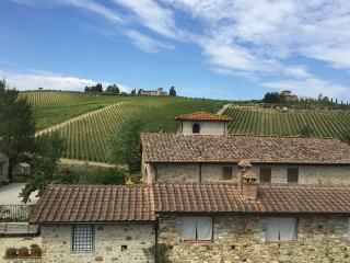 IL VICHIACCIO - San Angelo - Jacuzzi in the garden - Florence vacation rentals