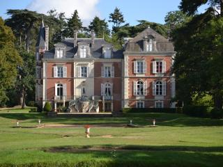 Loire Valley holiday chateau (pool, tennis, horse) - La Cornuaille vacation rentals