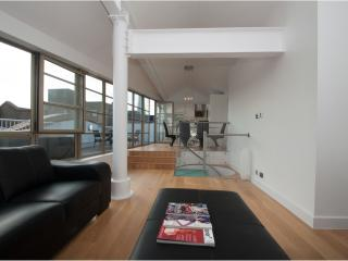 Luxe Penthouse - London vacation rentals