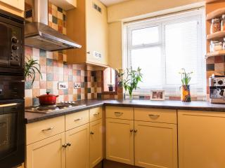 Ideally located Central London flat nr St Pancras - London vacation rentals