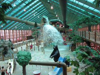 July 4th week on mtn top, free water park tickets - Gatlinburg vacation rentals