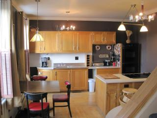 Full of Light Fully Equipped Furnished Apartment - Pittsburgh vacation rentals