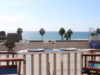 Ocean view, air conditioning and boogie boards - Oceanside vacation rentals