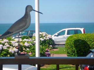 Biarritz front de mer, studio plage à pieds, wifi - Biarritz vacation rentals