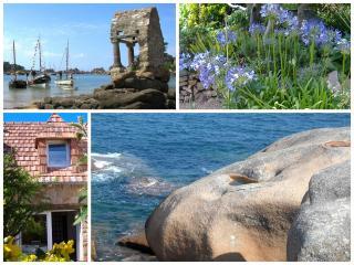 Holiday letting Ploumanach beach Perros-Guirec 2p - Perros-Guirec vacation rentals