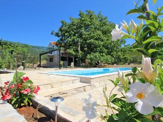 Gorgeous Villa with Internet Access and Television - Blato vacation rentals