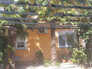 TH01025 Apartment Marinkovic/ Two Bedroom Apartment A1 - Porec vacation rentals
