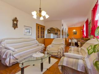 TH04215 Apartments Stakic/Three Bedroom Apartment A1 - Dramalj vacation rentals