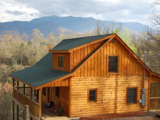In the Mood Log Cabin - Gatlinburg vacation rentals