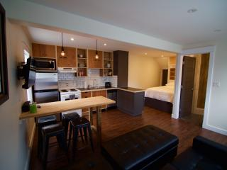 Stylish Studio Apt. Great Location - Saint John's vacation rentals