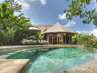 Charming Bungalow with Internet Access and A/C - Ubud vacation rentals