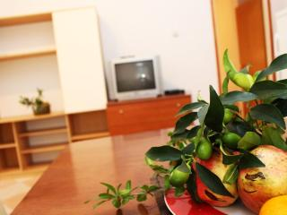 TH01407 Apartments Alina / Two bedrooms A2 - Vodice vacation rentals