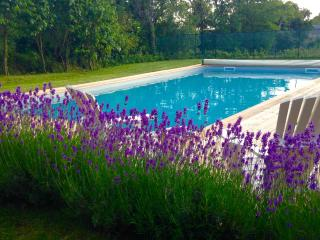 Gite Noisette a spacious stylish gite with pool - Bournazel vacation rentals
