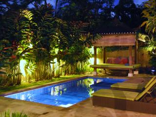 2 BR Spacious Villa in Seminyak - Seminyak vacation rentals