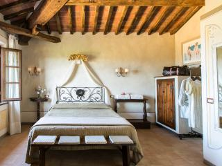 camera wifi, vista panoramica e piscina (girasole) - Bettolle vacation rentals