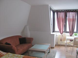 1 bedroom Apartment with Television in Saarbrücken - Saarbrücken vacation rentals