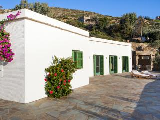 Olive Tree Villa With Breathtaking Sea View - Batsi vacation rentals
