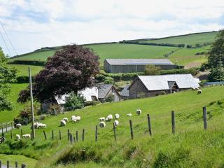 Yenworthy Cottage, Exmoor, Spectacular location - Oare vacation rentals