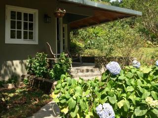 Talamanca Lodge - Guest House - Volcan vacation rentals