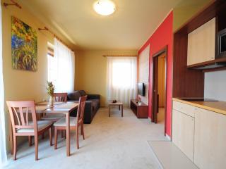 Romantic 1 bedroom Vysoke Tatry Condo with Elevator Access - Vysoke Tatry vacation rentals