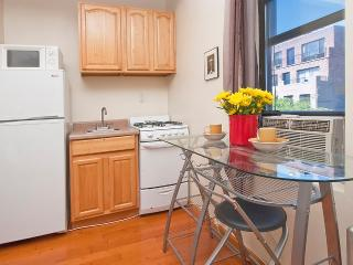 Adorable Times Square studio - amazing location - New York City vacation rentals