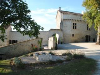 Château de Plèneselve - Gîte - Chambres d'hôtes - Bon-Encontre vacation rentals