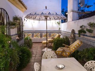 casa Monik - Nueva Andalucia vacation rentals