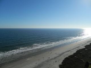 Book Now! Upscale 3 Br 3 Ba, Oceanfront Condo! - North Myrtle Beach vacation rentals