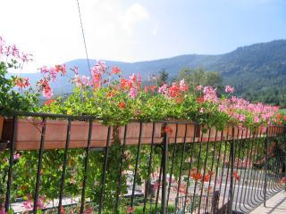 Bright 5 bedroom Gite in Selestat - Selestat vacation rentals