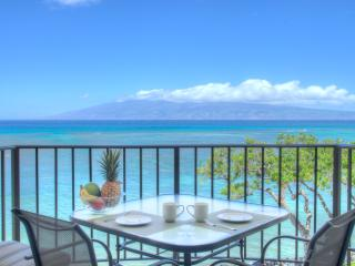 Nice House with Internet Access and Wireless Internet - Napili-Honokowai vacation rentals