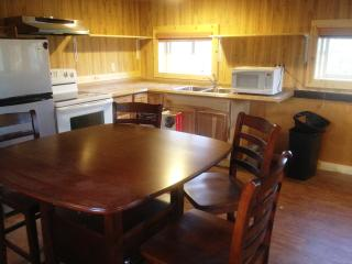 Denali Park View Family Log Cabin - Sleeps 5 WIFI - Denali National Park and Preserve vacation rentals