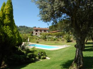 Beautiful Villa with Internet Access and Washing Machine - Marco de Canavezes vacation rentals