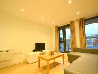 Fantastic Two Bed Apartment at MyBase Borough - London vacation rentals